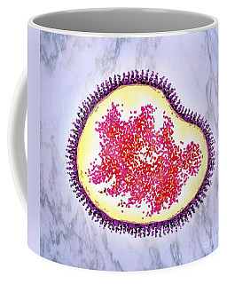 Avian Flu Coffee Mug