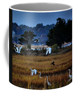 Aviary Convention Coffee Mug