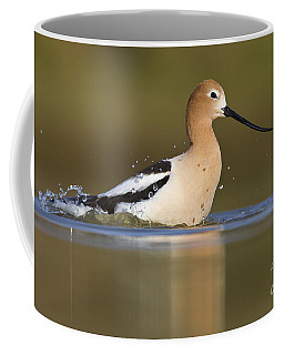 Avocet Taking A Bath Coffee Mug