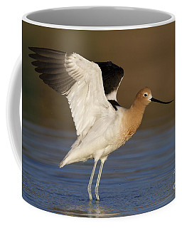 Avocet Wing Flap Coffee Mug