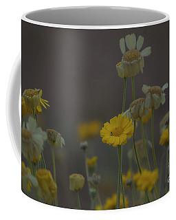 Coffee Mug featuring the photograph Az Flowers by Rod Wiens