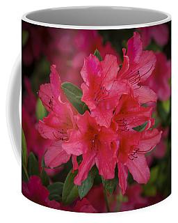 Azaleas 1 Coffee Mug