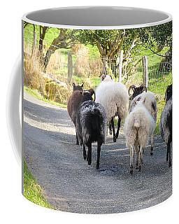 Ba Ba Blacksheep Coffee Mug by Suzanne Oesterling