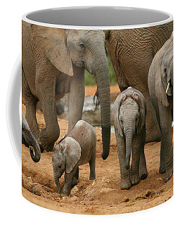 Baby African Elephants Coffee Mug
