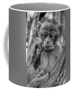 Baby Barbary Monkey Coffee Mug