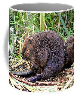 Baby Beaver With Mother Coffee Mug