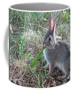Baby Bunny Eating Dandelion #01 Coffee Mug by Ausra Huntington nee Paulauskaite