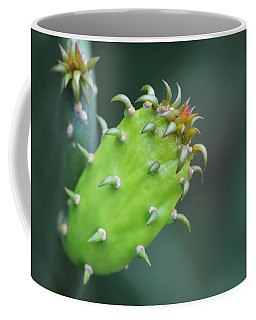 Baby Cactus - Macro Photography By Sharon Cummings Coffee Mug