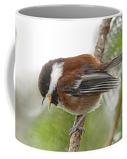 Coffee Mug featuring the photograph Baby Chickadee Calling For Mom by Peggy Collins