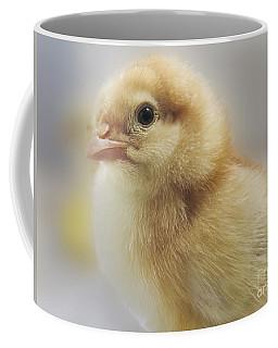Baby Chicken Coffee Mug