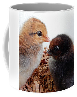 Baby Chicks Coffee Mug