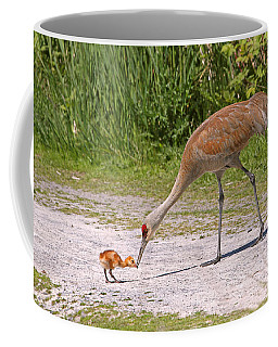 Baby Crane With Mother Coffee Mug