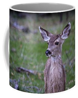 Baby Deer Coffee Mug