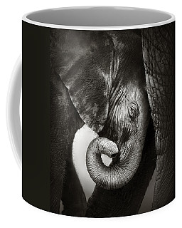 Baby Elephant Seeking Comfort Coffee Mug