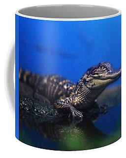 Baby Gator Coffee Mug