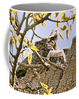 Coffee Mug featuring the photograph Baby Great Horned Owls In Nest by Peggy Collins