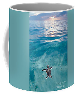 Baby Green Sea Turtle Coffee Mug