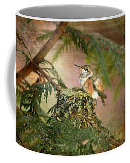 Baby Hummingbird In The Forest Coffee Mug