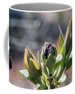 Baby Lilac Coffee Mug