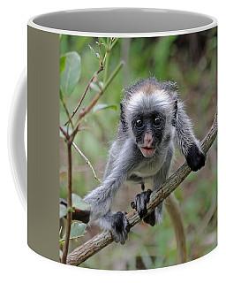 Baby Red Colobus Monkey Coffee Mug