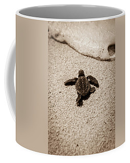 Baby Sea Turtle Coffee Mug
