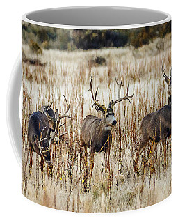 Bachelor Bucks  Coffee Mug