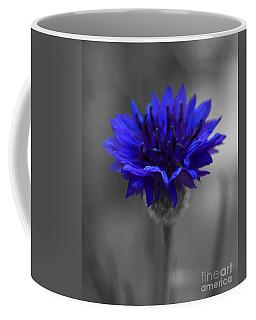 Bachelor's Button Coffee Mug