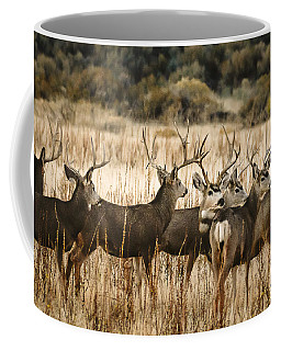 Bachloer Boys  Coffee Mug