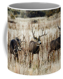 Bachloer Bucks Coffee Mug