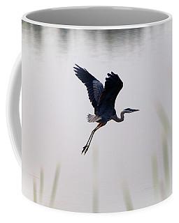 Back Lit Great Blue Heron Ardea Coffee Mug