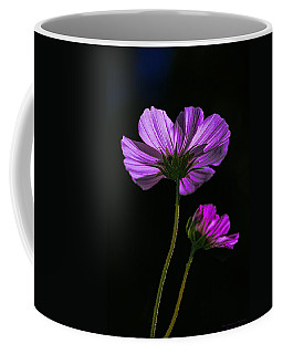 Backlit Blossoms Coffee Mug by Marty Saccone