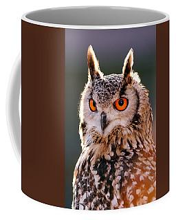 Backlit Eagle Owl Coffee Mug