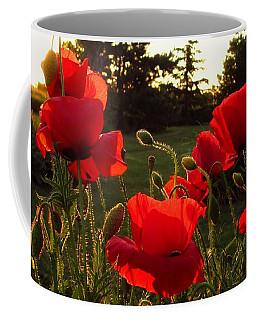 Backlit Red Poppies Coffee Mug