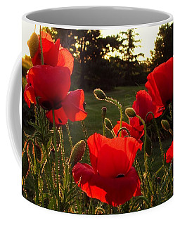 Backlit Red Poppies Coffee Mug