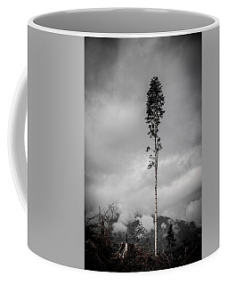 Lone Tree Landscape  Coffee Mug