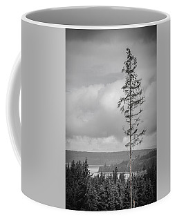 Tall Tree View Coffee Mug