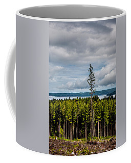 Logging Road Ocean View  Coffee Mug
