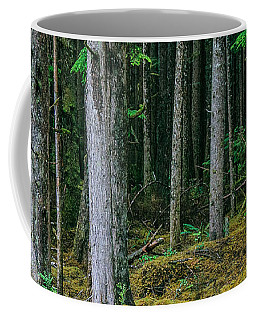 Inside View Backroad Forest Coffee Mug