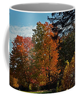 Coffee Mug featuring the photograph Backyard Beauty by Judy Wolinsky