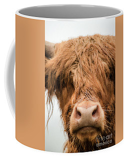 Bad Hair Day Coffee Mug by Linsey Williams