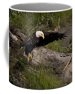 Coffee Mug featuring the photograph Bald Eagle  #1262 by J L Woody Wooden