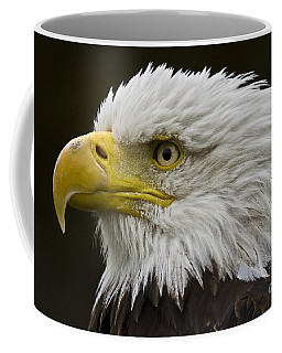 Bald Eagle - 7 Coffee Mug