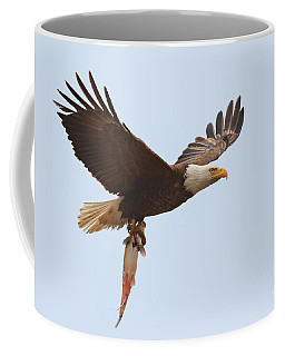 Coffee Mug featuring the photograph Bald Eagle Fisn Dinner by Beth Sargent