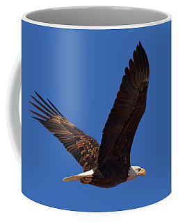 Bald Eagle Fly By Coffee Mug