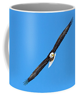Bald Eagle In Flight Coffee Mug