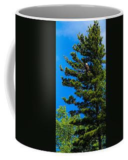 Coffee Mug featuring the photograph Bald Eagle   by Lars Lentz