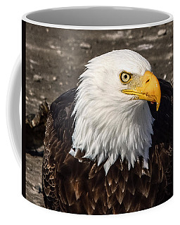 Bald Eagle Looking At You Coffee Mug
