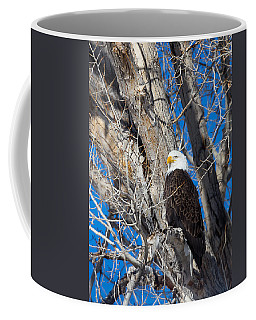 Coffee Mug featuring the photograph Bald Eagle by Michael Chatt