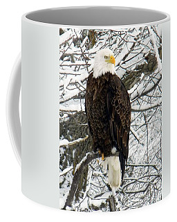 Coffee Mug featuring the photograph Bald Eagle by Penny Meyers