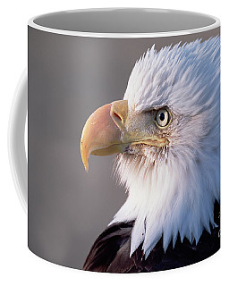 Bald Eagle Portrait Alaska Coffee Mug